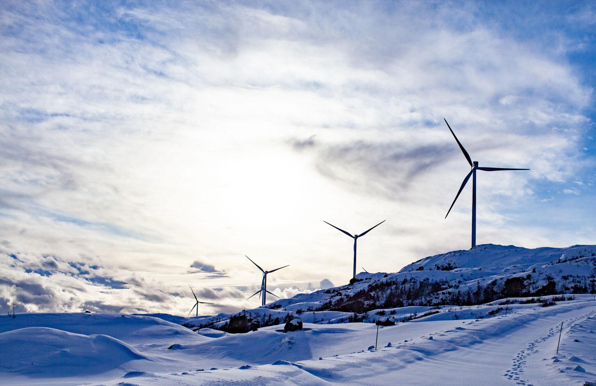 Høyesterett: Vindkraftutbyggingen på Fosen krenker urfolks menneskerettigheter